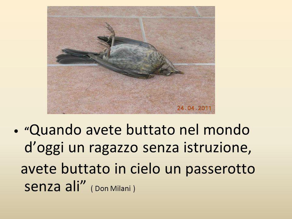 avete buttato in cielo un passerotto senza ali ( Don Milani )