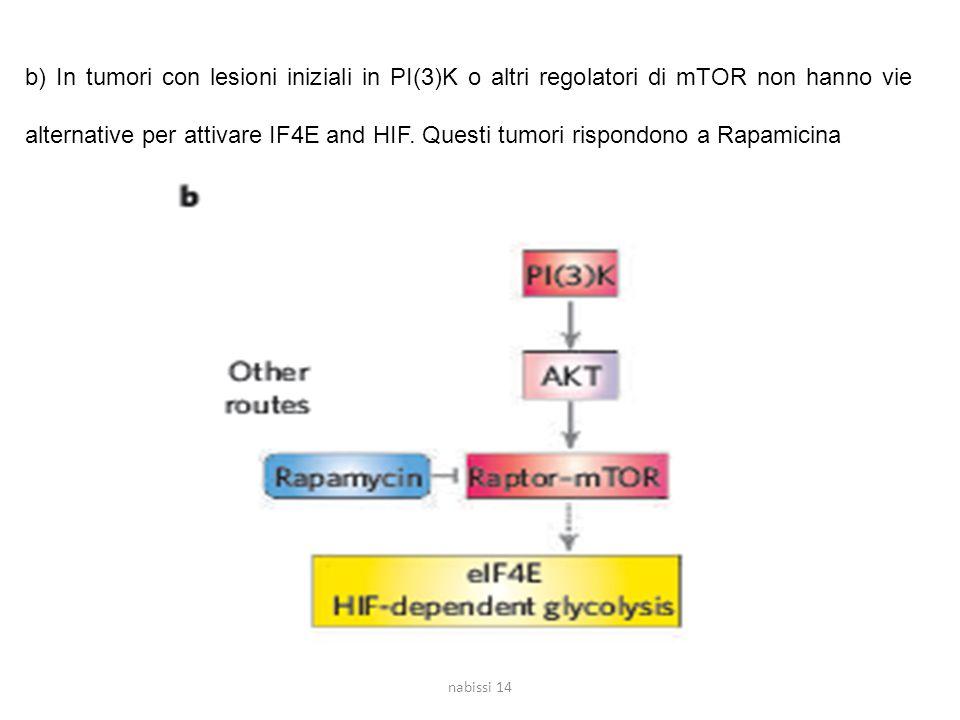b) In tumori con lesioni iniziali in PI(3)K o altri regolatori di mTOR non hanno vie alternative per attivare IF4E and HIF. Questi tumori rispondono a Rapamicina