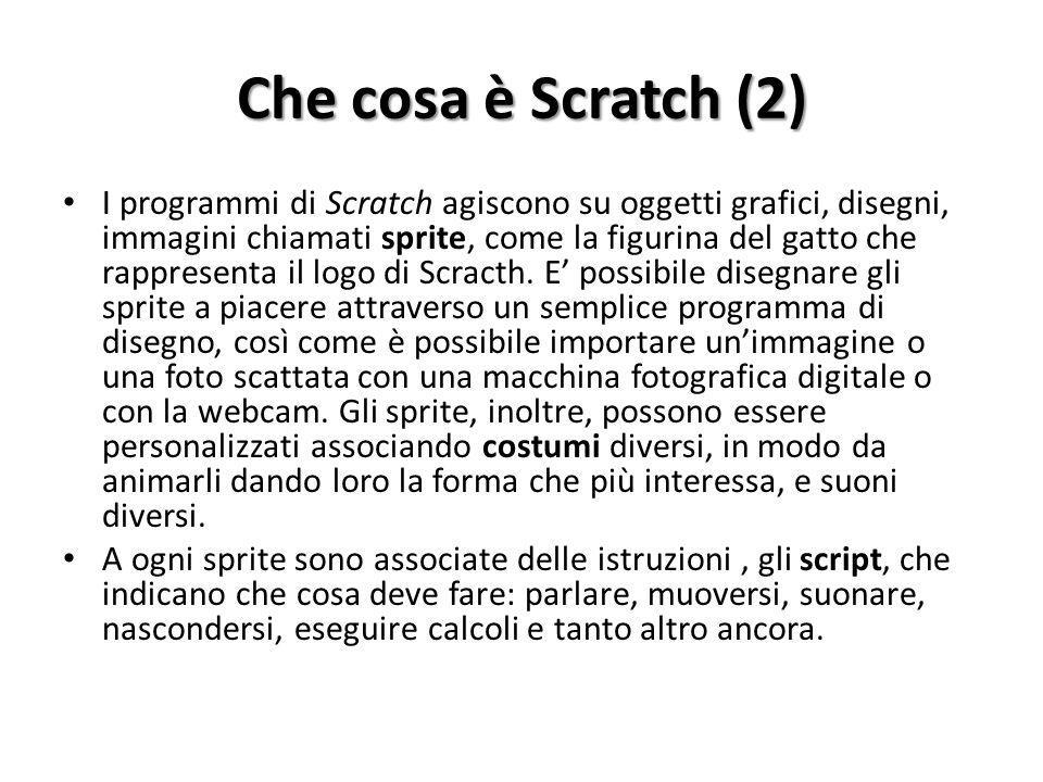 Che cosa è Scratch (2)