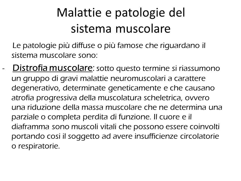 Malattie e patologie del sistema muscolare