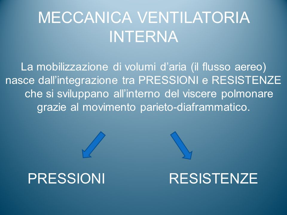 MECCANICA VENTILATORIA INTERNA