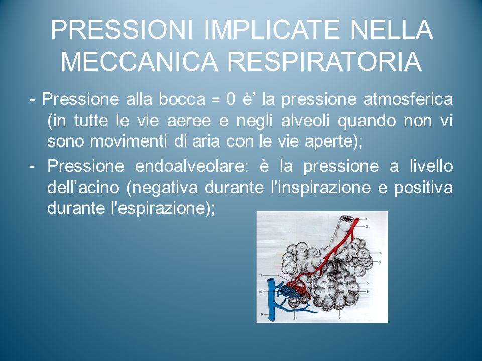 PRESSIONI IMPLICATE NELLA MECCANICA RESPIRATORIA