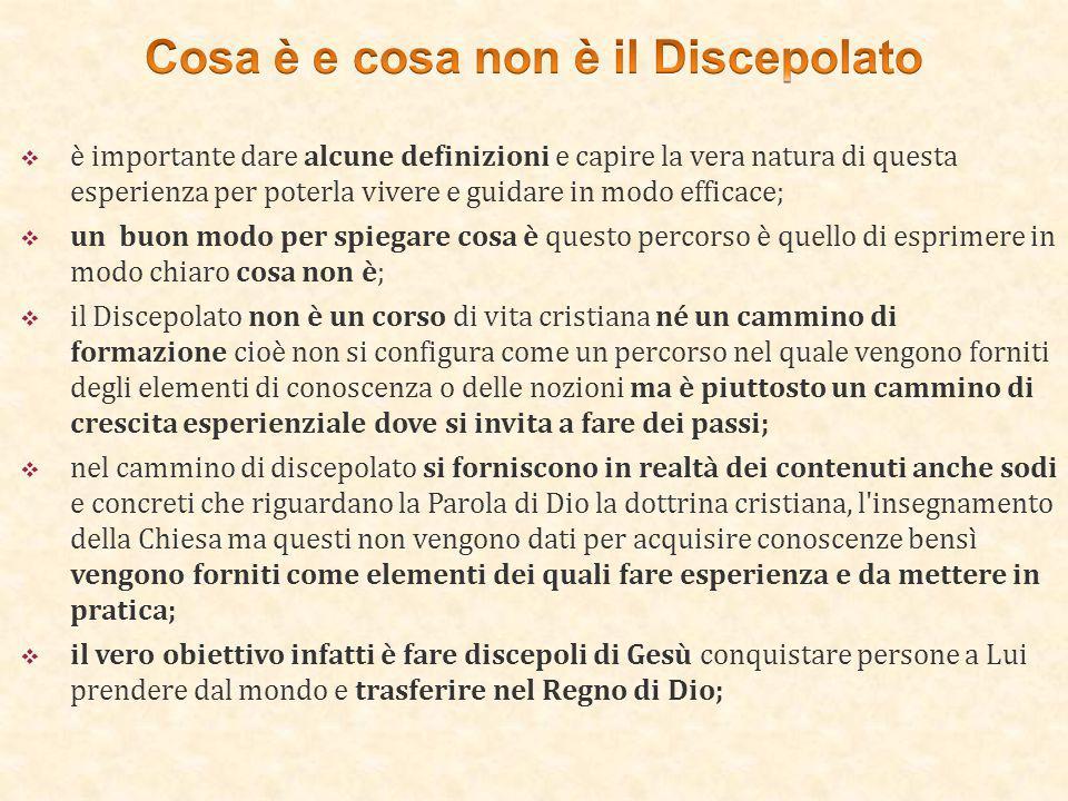 Cosa è e cosa non è il Discepolato