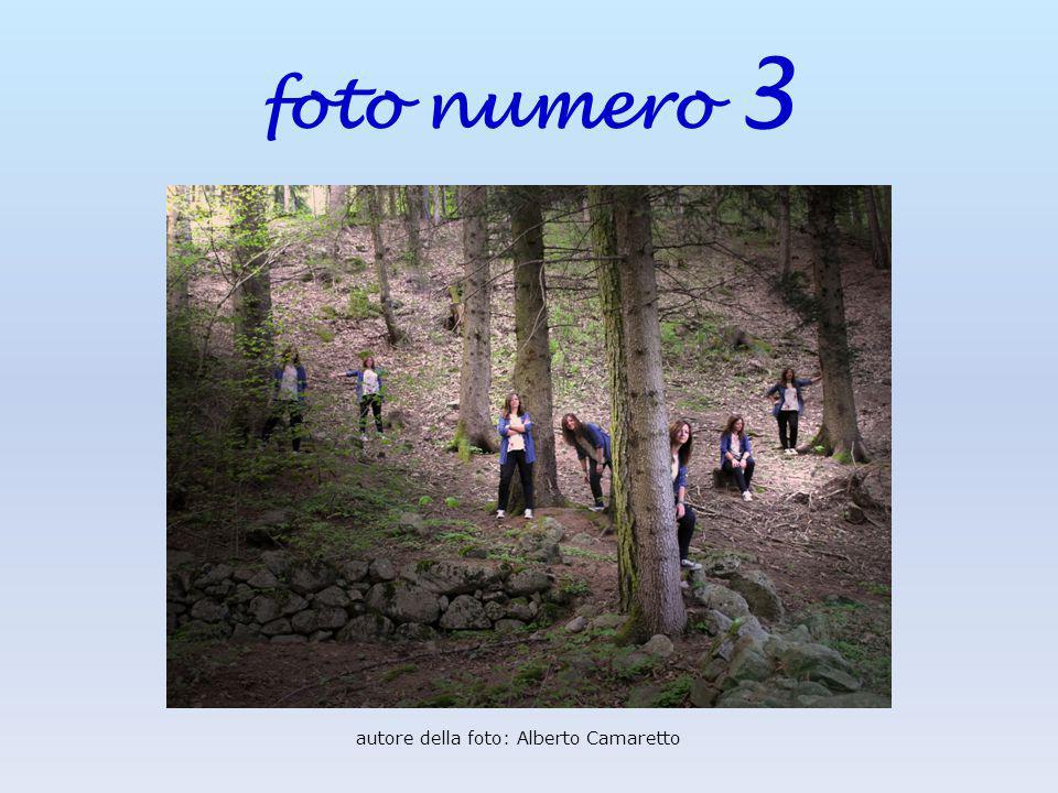 foto numero 3 autore della foto: Alberto Camaretto