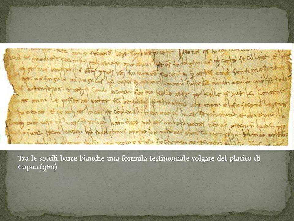 Tra le sottili barre bianche una formula testimoniale volgare del placito di Capua (960)