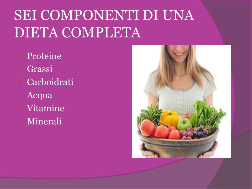 SEI COMPONENTI DI UNA DIETA COMPLETA