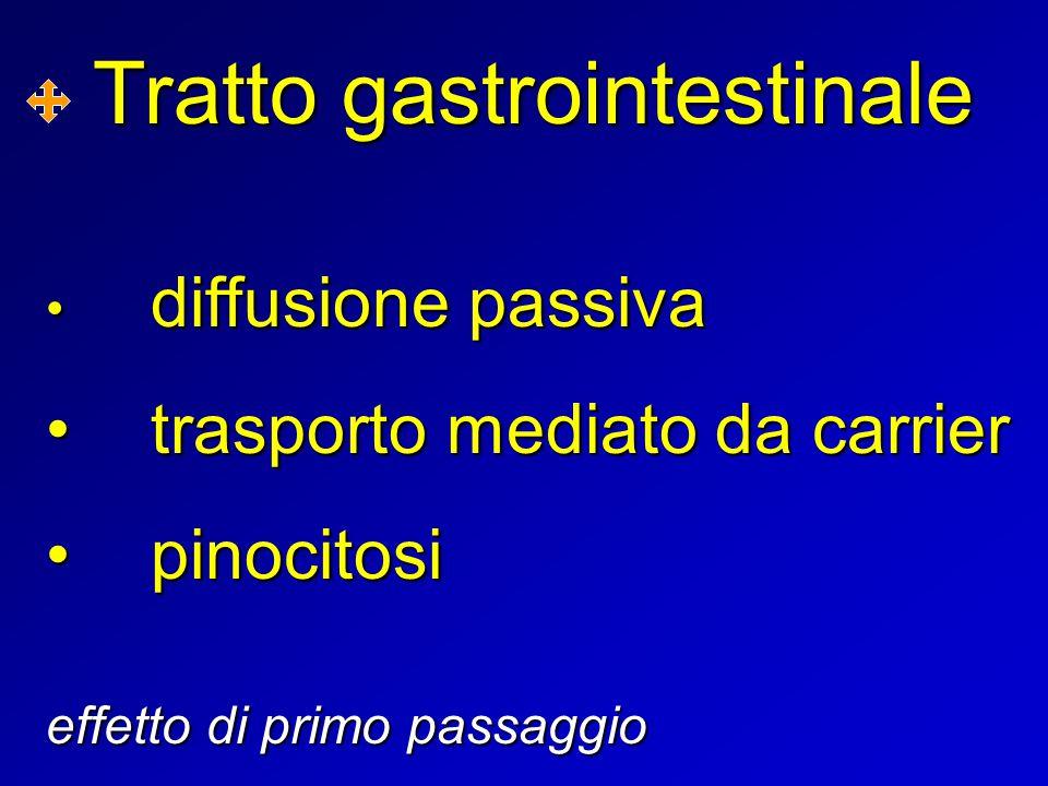 Tratto gastrointestinale