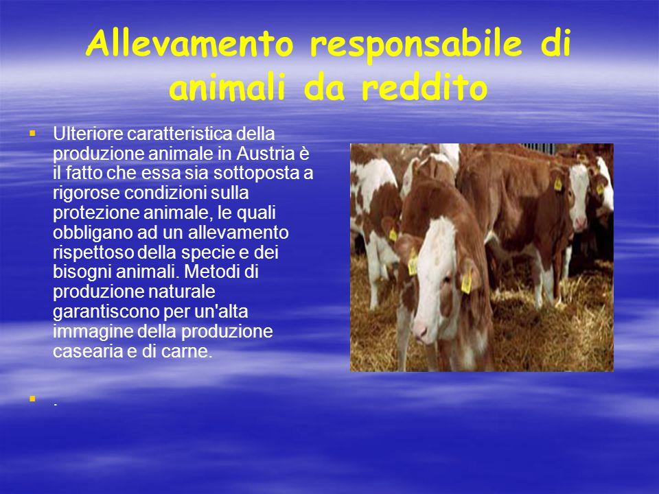 Allevamento responsabile di animali da reddito