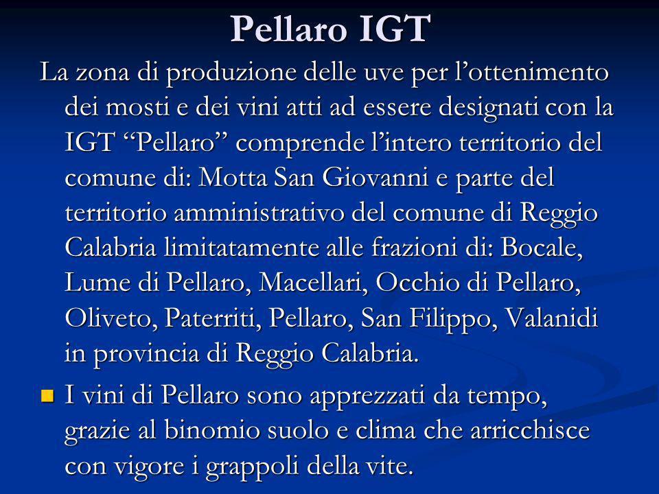 Pellaro IGT