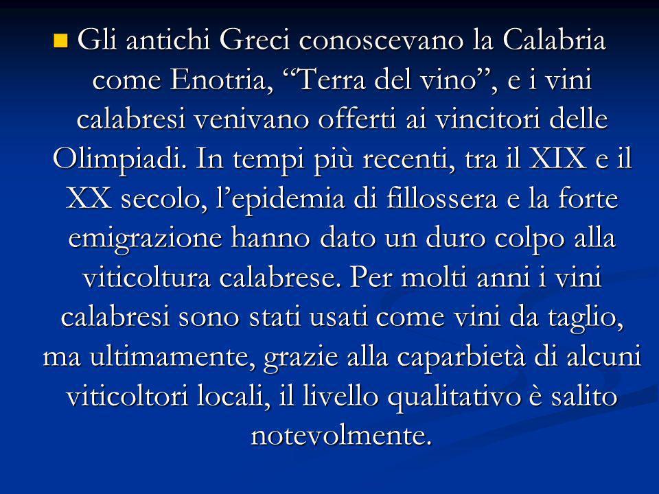 Gli antichi Greci conoscevano la Calabria come Enotria, Terra del vino , e i vini calabresi venivano offerti ai vincitori delle Olimpiadi.