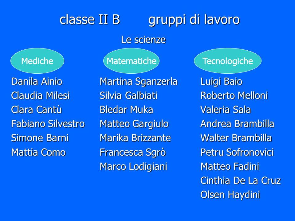 classe II B gruppi di lavoro