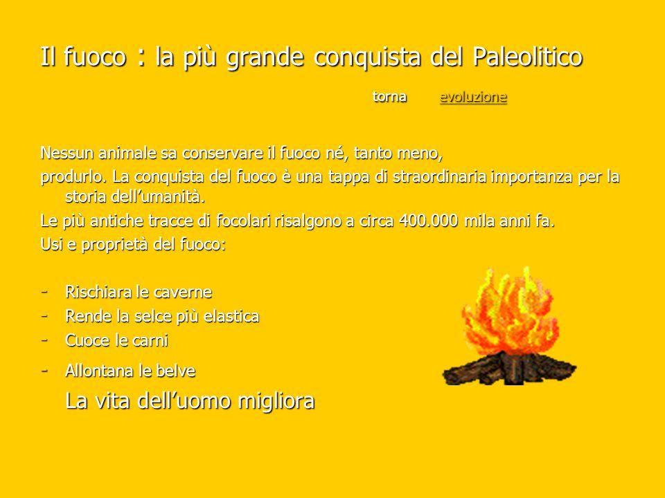 Il fuoco : la più grande conquista del Paleolitico torna evoluzione