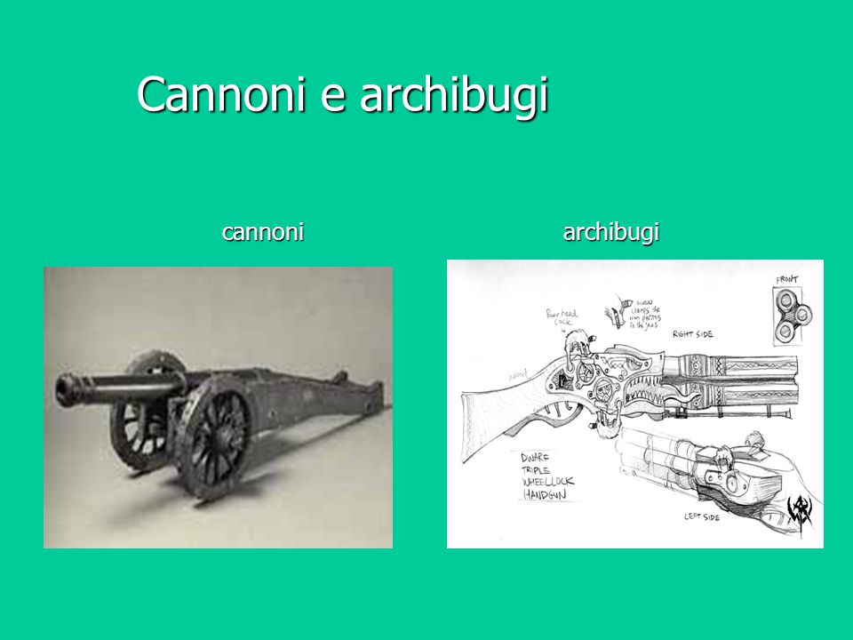 Cannoni e archibugi cannoni archibugi