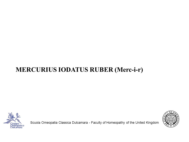 MERCURIUS IODATUS RUBER (Merc-i-r)