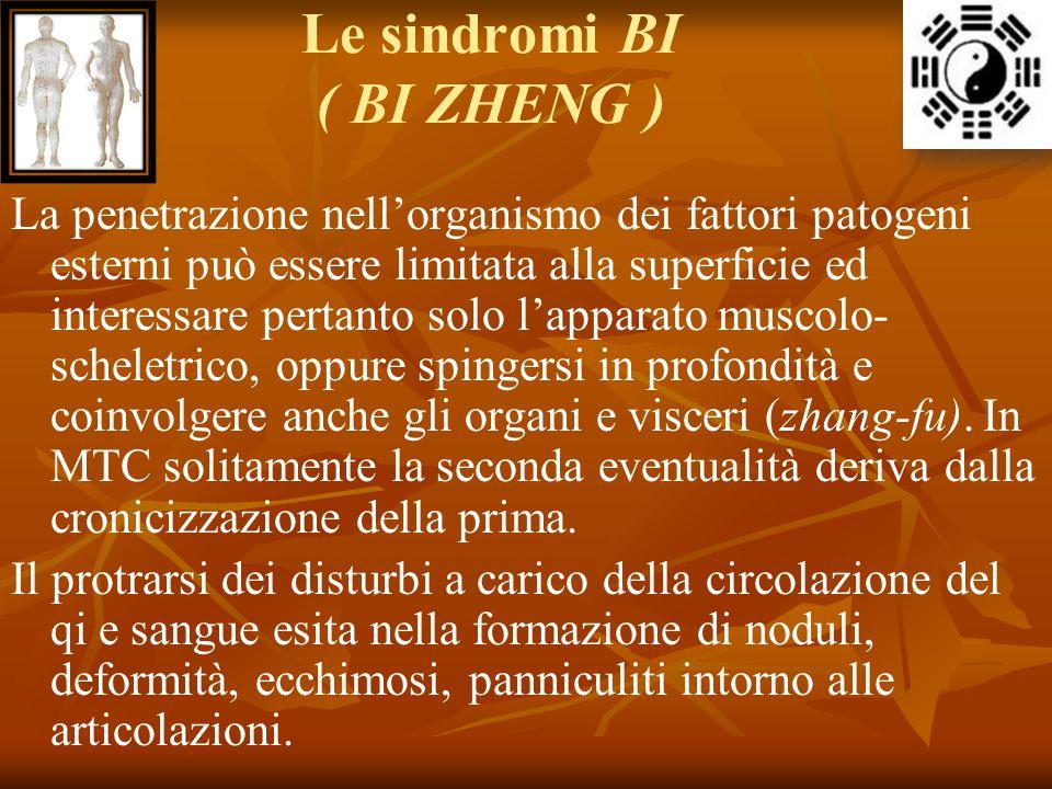 Le sindromi BI ( BI ZHENG )