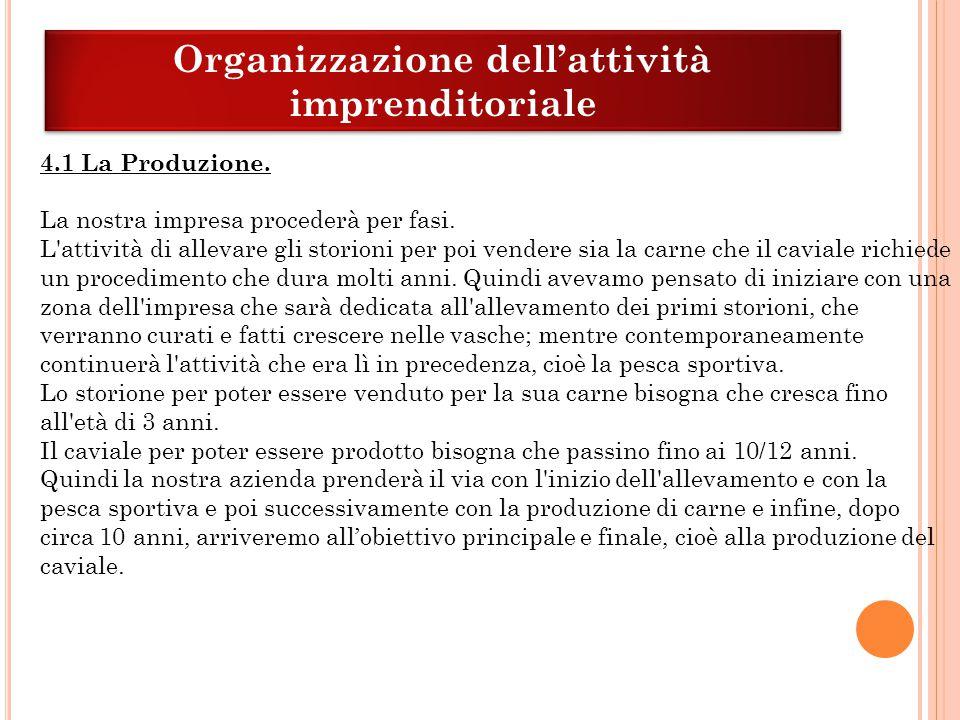 Organizzazione dell'attività imprenditoriale