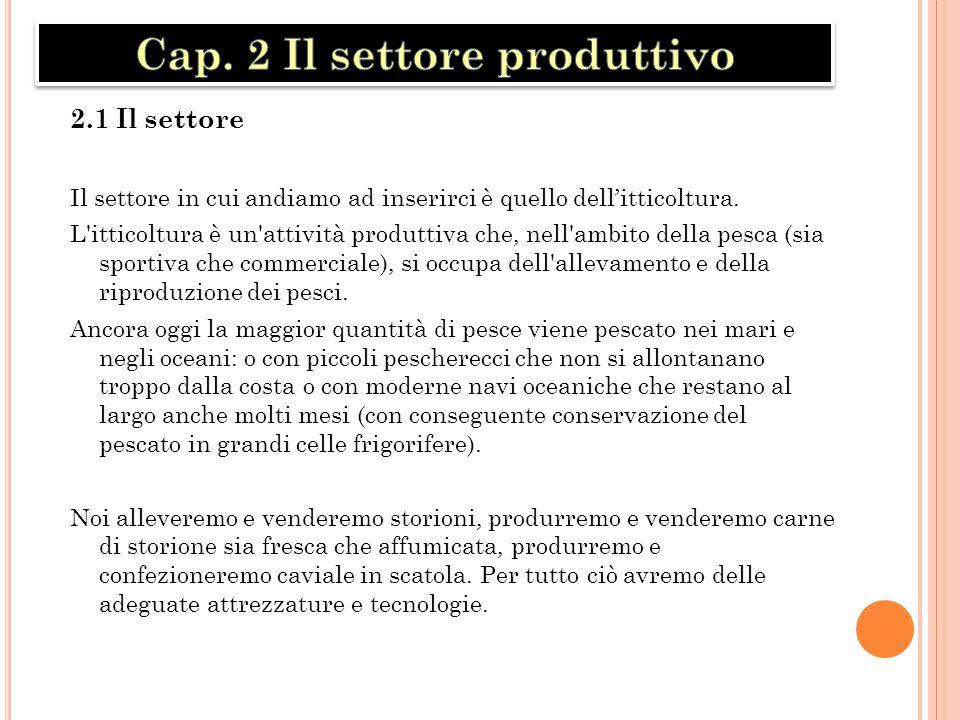 Cap. 2 Il settore produttivo