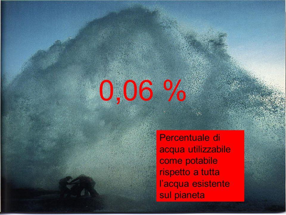 0,06 % Percentuale di acqua utilizzabile come potabile rispetto a tutta l'acqua esistente sul pianeta.