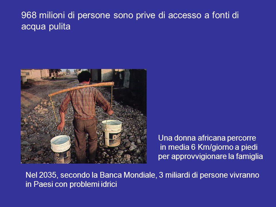 968 milioni di persone sono prive di accesso a fonti di acqua pulita