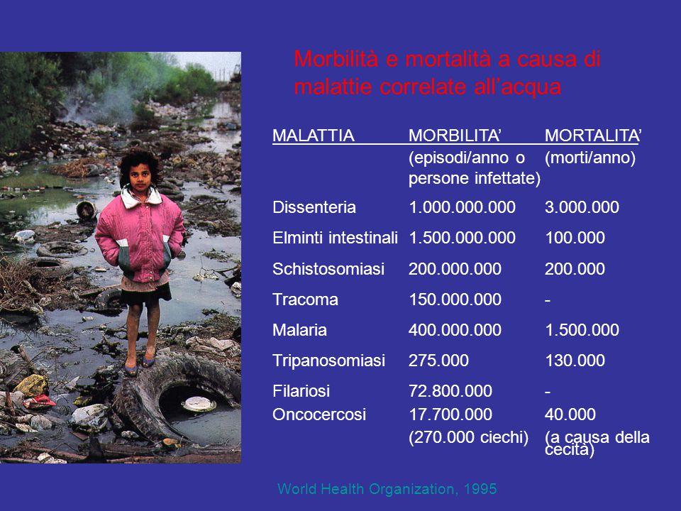 Morbilità e mortalità a causa di malattie correlate all'acqua