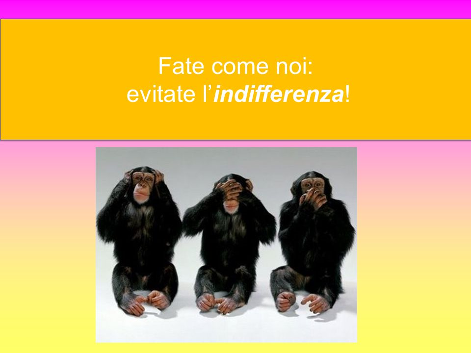 Fate come noi: evitate l'indifferenza!