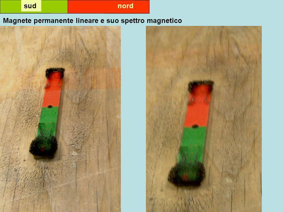 sud nord Magnete permanente lineare e suo spettro magnetico