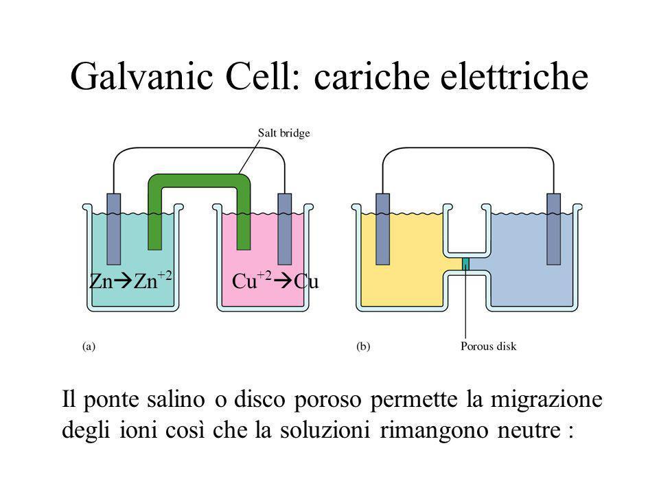 Galvanic Cell: cariche elettriche