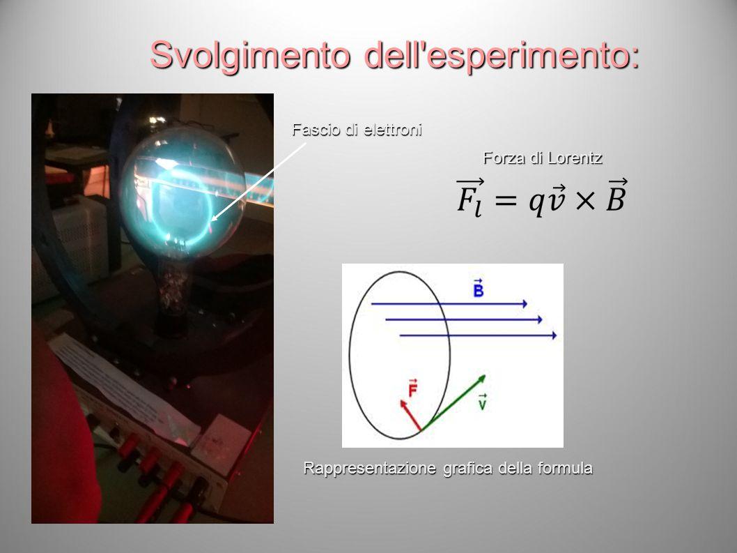 Svolgimento dell esperimento: