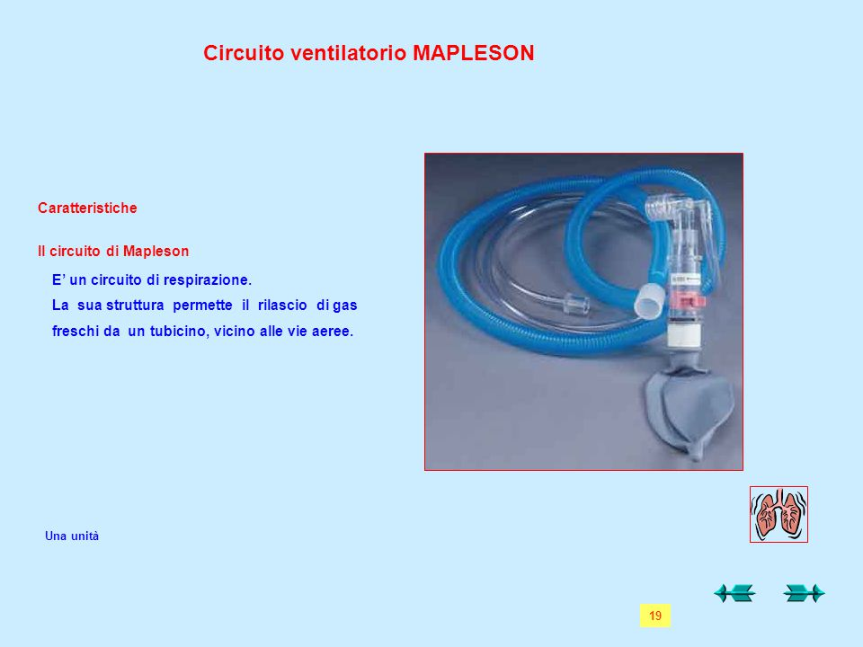 Circuito ventilatorio MAPLESON