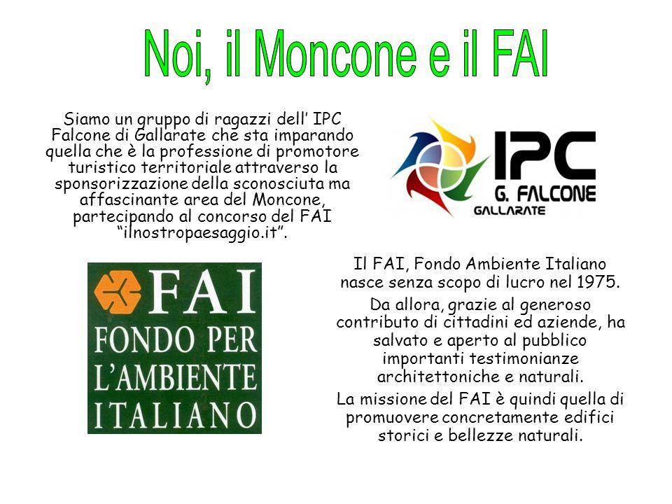 Il FAI, Fondo Ambiente Italiano nasce senza scopo di lucro nel 1975.
