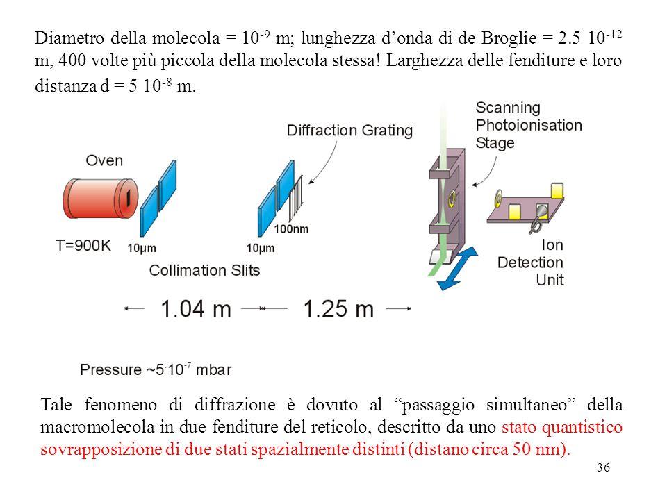 Diametro della molecola = 10-9 m; lunghezza d'onda di de Broglie = 2