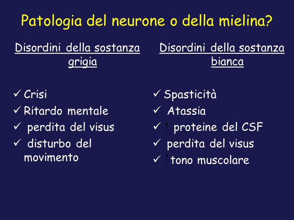 Patologia del neurone o della mielina