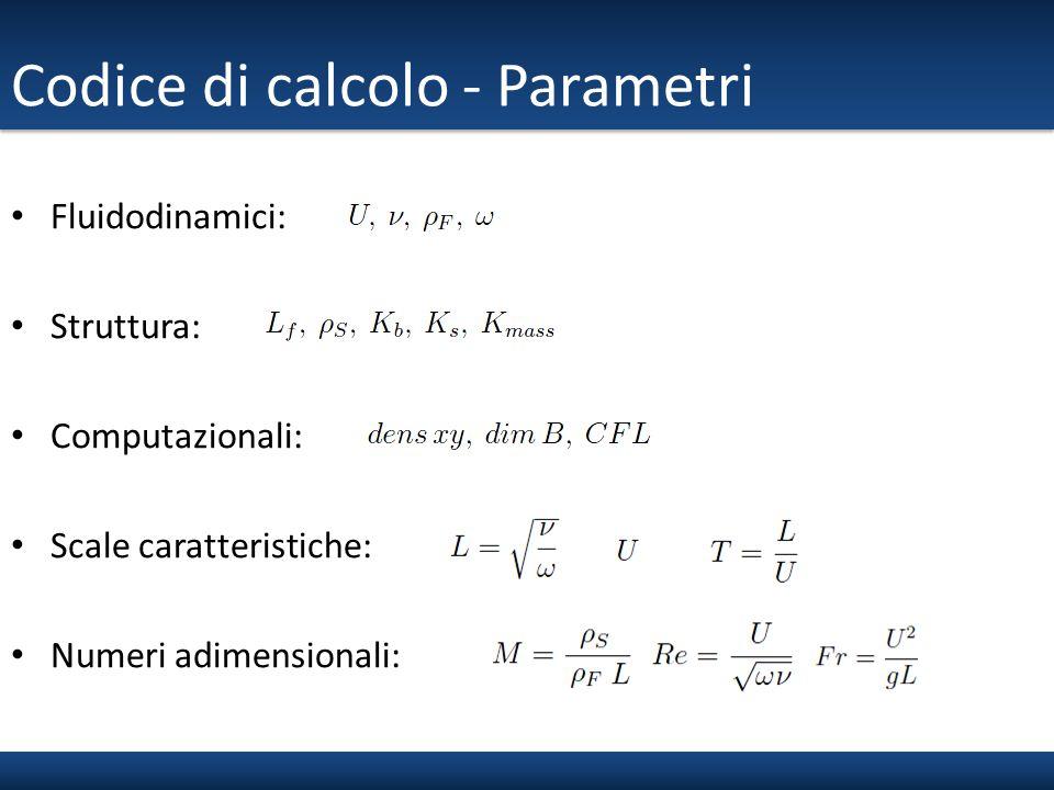 Codice di calcolo - Parametri