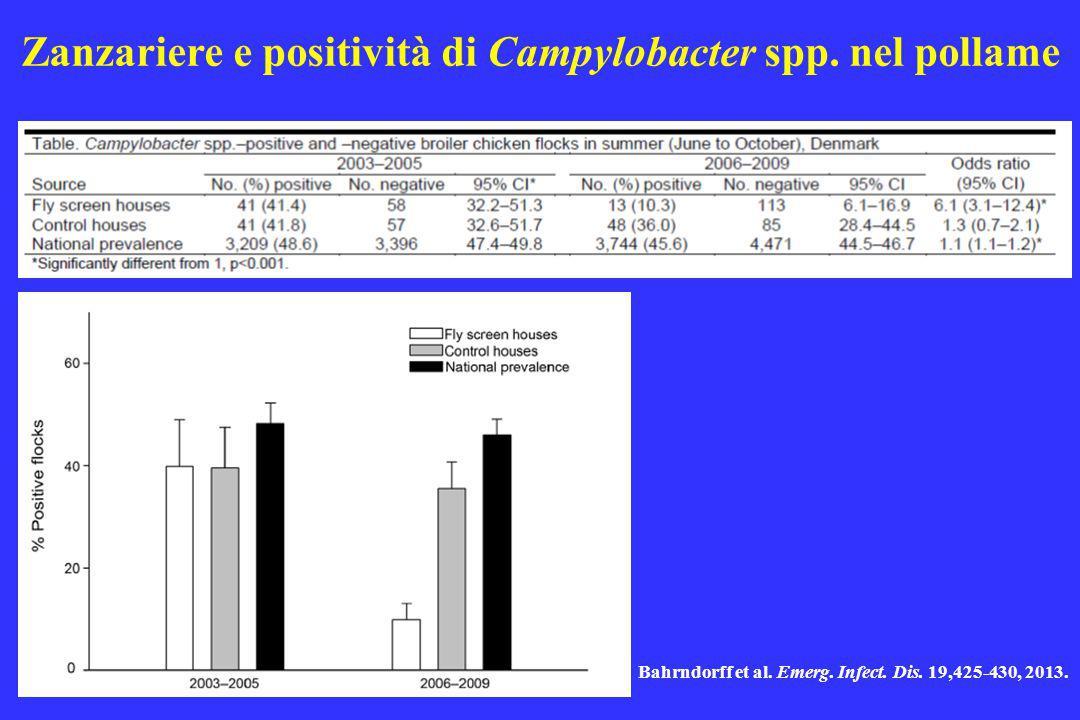 Zanzariere e positività di Campylobacter spp. nel pollame
