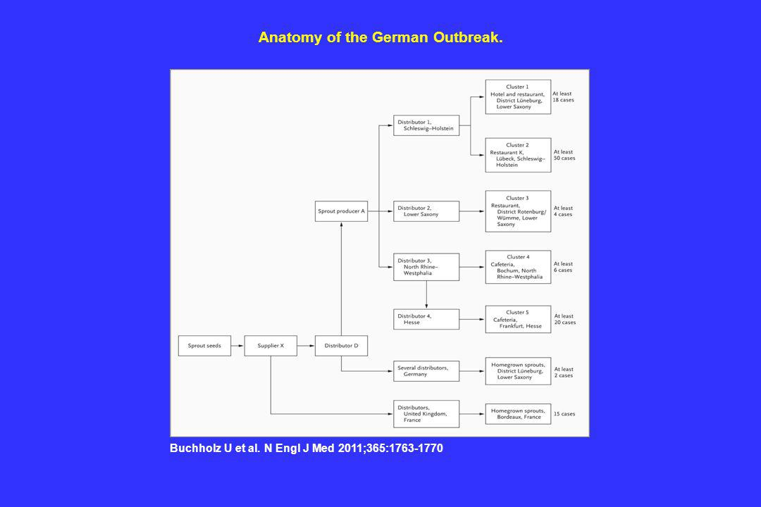 Anatomy of the German Outbreak.