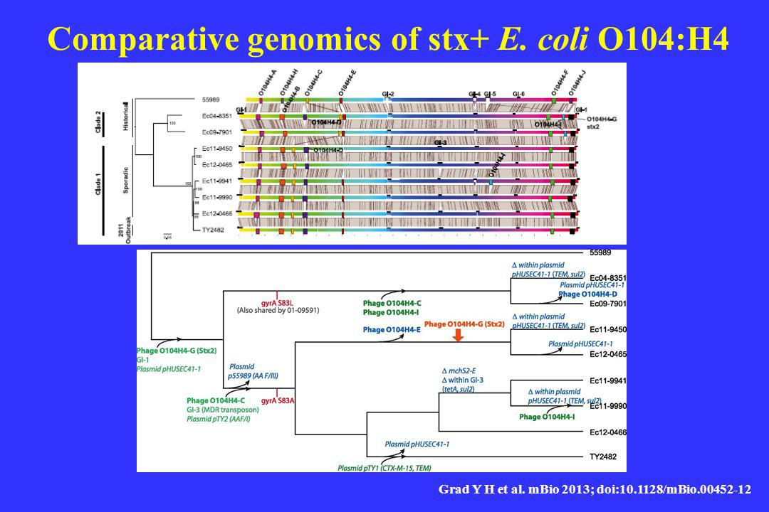 Comparative genomics of stx+ E. coli O104:H4