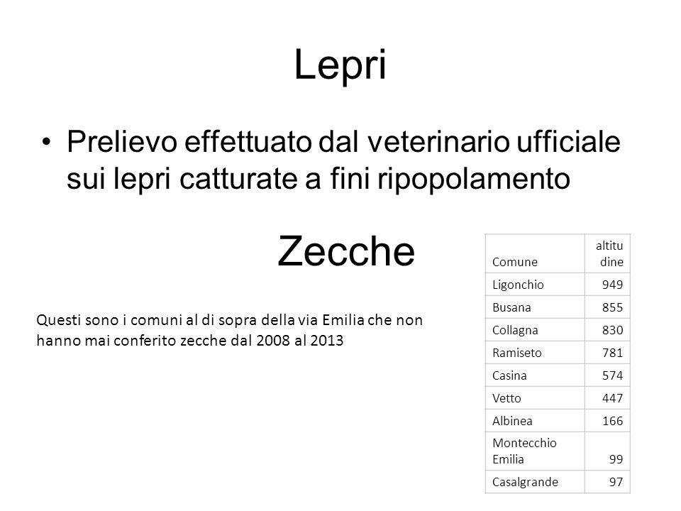 Lepri Prelievo effettuato dal veterinario ufficiale sui lepri catturate a fini ripopolamento. Zecche.
