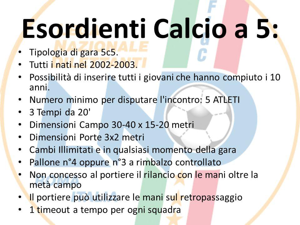 Esordienti Calcio a 5: Tipologia di gara 5c5.