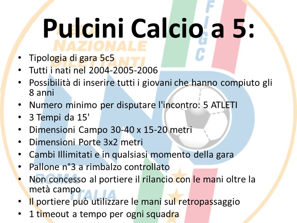 Pulcini Calcio a 5: Tipologia di gara 5c5