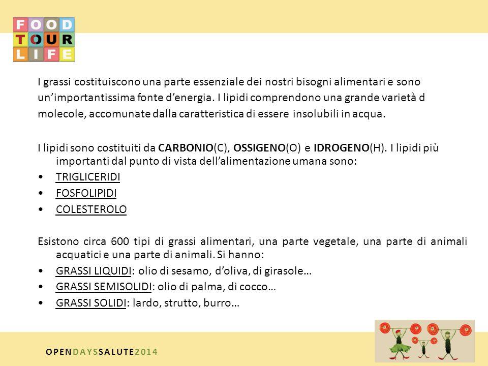 GRASSI LIQUIDI: olio di sesamo, d'oliva, di girasole…