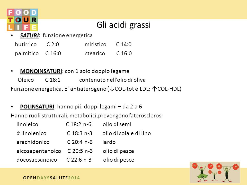 Gli acidi grassi SATURI: funzione energetica