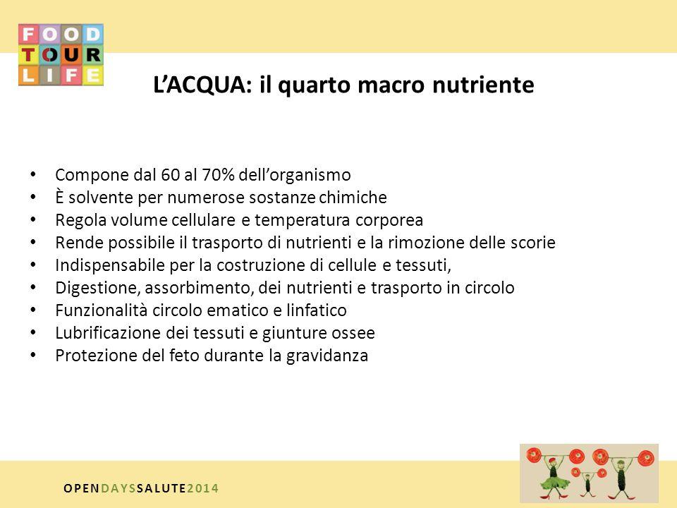 L'ACQUA: il quarto macro nutriente