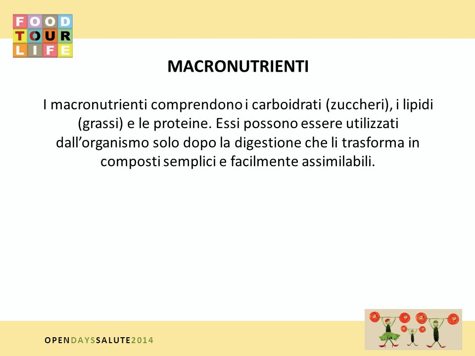 MACRONUTRIENTI