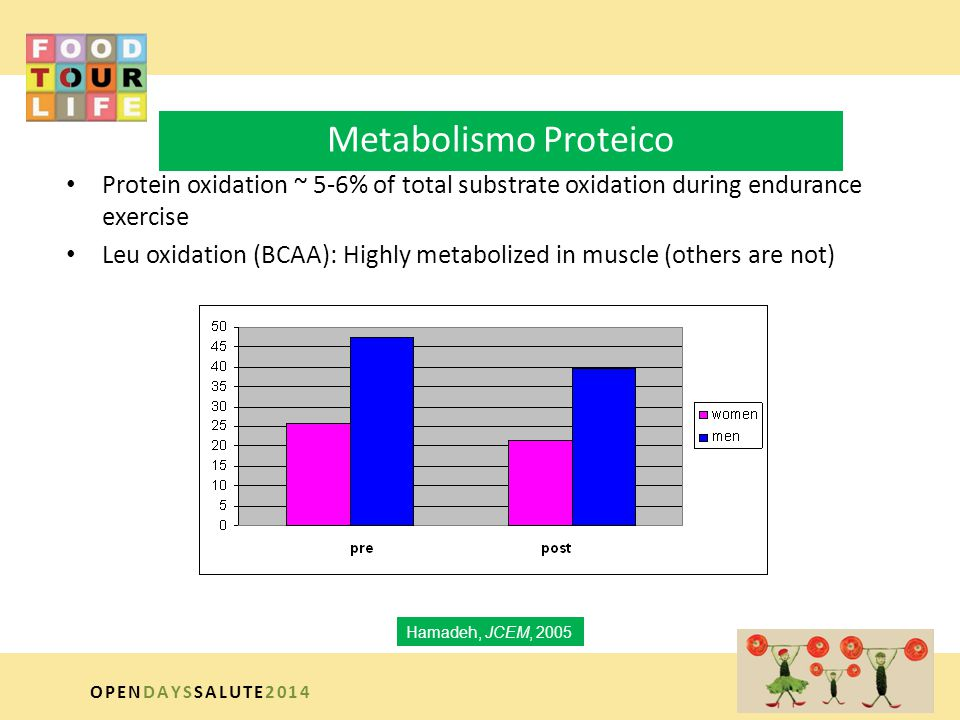 Metabolismo Proteico Protein oxidation ~ 5-6% of total substrate oxidation during endurance exercise.