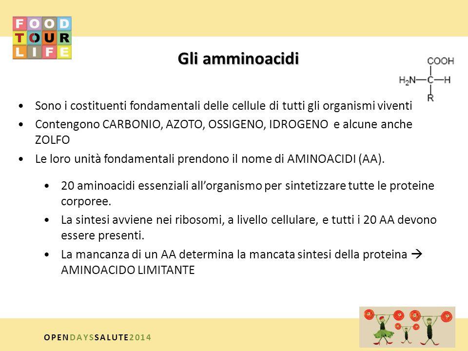 Gli amminoacidi Sono i costituenti fondamentali delle cellule di tutti gli organismi viventi.