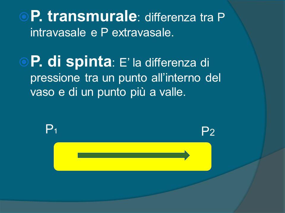 P. transmurale: differenza tra P intravasale e P extravasale.