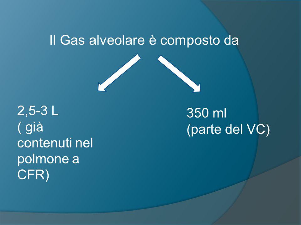 Il Gas alveolare è composto da