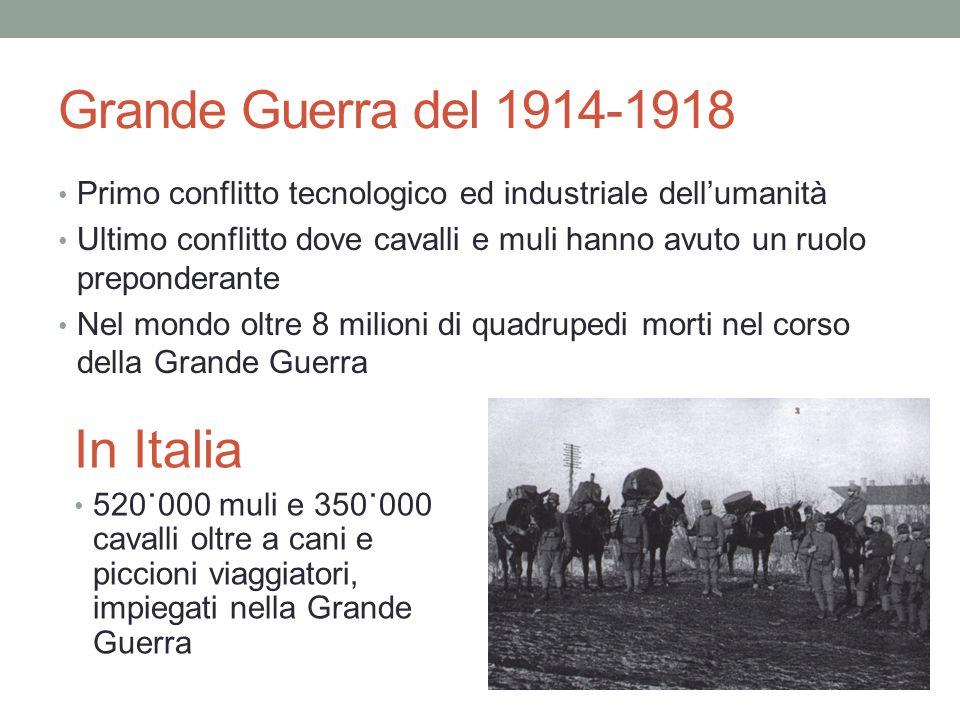 Grande Guerra del 1914-1918 In Italia