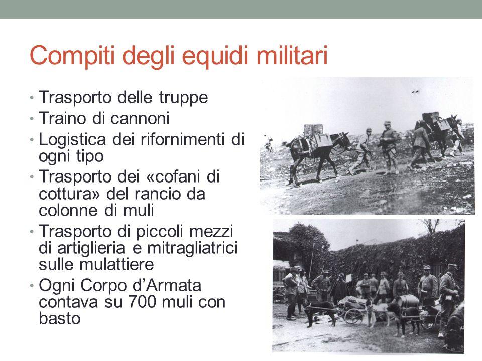 Compiti degli equidi militari