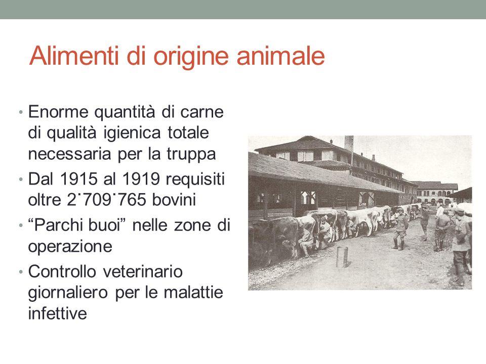 Alimenti di origine animale